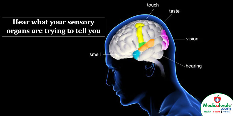 Hear what your sensory organs are trying to tell you